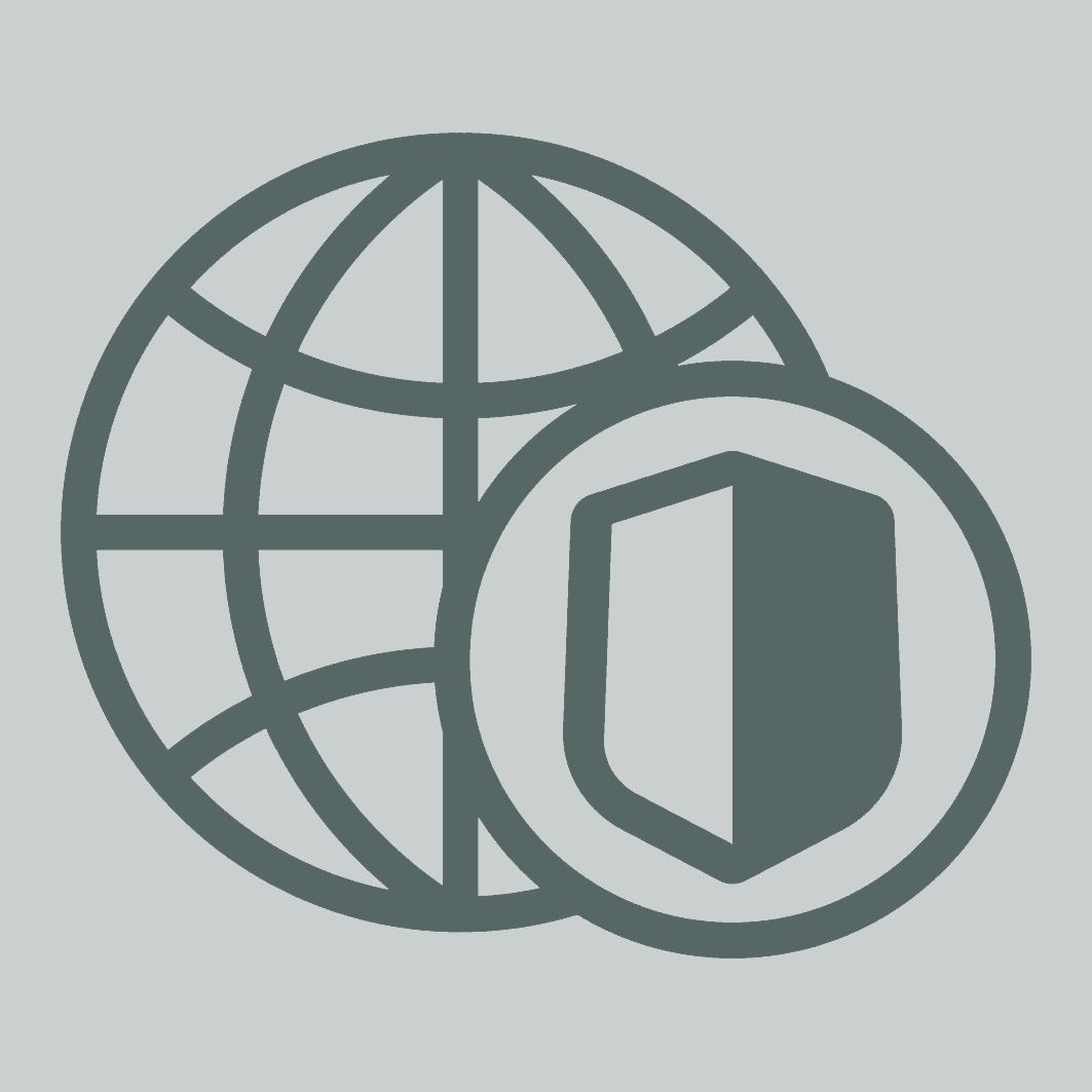 Cyber Security Icon-Grey-no-back